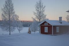 #358/365: God Jul! Frohe Weihnachten! Merry Christmas! (soschy) Tags: christmas schnee winter snow weihnachten sweden schweden sverige 365 jul 2010 project365 onephotoaday båtfors fromsoschy