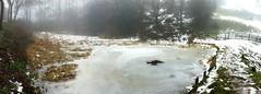Pond panorama at Waseley Hills (ayjay3) Tags: autostitch snow birmingham unitedkingdom gbr