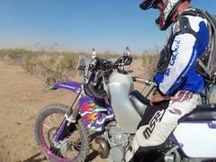 Billys Purple Hooter