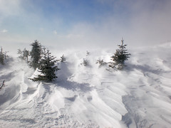 Windswept (forester.jake) Tags: new york winter mountain snow ny mt wind hiking adirondacks marcy windswept summit adk