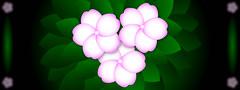 123110Flower101 (Clarobotoo) Tags: flowers lilies impatiens adobeillustrator