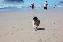 Beach 07-25-10 072 ED