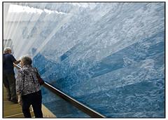 Blanton Museum of Art (swanksalot) Tags: tourism wall austin faved blantonmuseumofart swanksalot sethanderson 18mm105mm