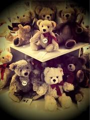 Bear Spotting Adventures Steiff Teddy Bears