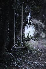 Inverno 2011 Trittico (1) (SteDigit) Tags: winter nikon hiver inverno pistoia uggia stedigit casaalvento