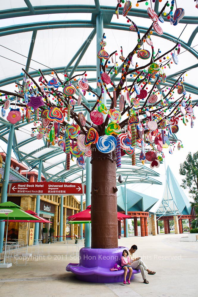 Under the candy tree @ Singapore