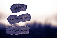 Twelve - Don't Give Up (Spreading Wings Photography) Tags: window paper notebook words text 365 dontgiveup project365 project36512 2011inphotos