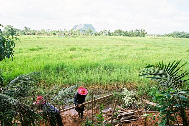 Koh Samui 蘇梅島 DEC 2010