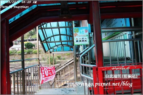 台北瑞芳(侯硐站)貓村20101128_I5568