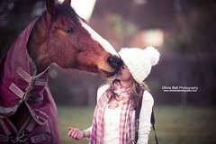 Can I have a horse kiss? - Day 163/365 (explore) (Olivia L'Estrange-Bell) Tags: horse kiss kissing 365 365days 365project horsekiss horsekissing kissinghorse oliviabell oliviabellphotography tbsart