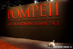 Pompeii Life in a Roman Town 79CE