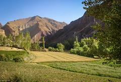Shash Pul   Bamiyan (Hadi Zaher) Tags: mountain afghanistan tree green highlands farm central valley koh baba bamiyan shush hazarajat hazara darra shash pul bamyan bamian kalu zohak