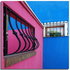 Burano tribute (5) - Living among the colors (Nespyxel) Tags: pink blue windows colors lines wall blu curves rosa compo railing curve colori burano finestre geometrie flickrcolors linee ringhiera geometries dedicatedphoto nespyxel stefanoscarselli livingamongthecolors