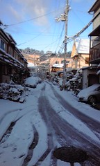 Snow cycling Kyoto