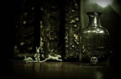 1.2.3... (  Pounkie  ) Tags: bunny vintage toys skull bottle 123 rabbits tableaux archibald lapins jouets crne vendu cadres fiole ttedemort jouetvintage archibaldlecrne 123partez expokitchenette112011