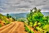 Village Road (zulkifaltin) Tags: kahramanmaraş büyükimalı türkoğlu köy village nature doğa yol road patika toprak earth tepe dağ hdr