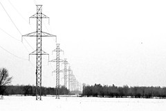Power Lines (Light Collector) Tags: lines towers powerlines hydro transmission clearviewtownship ourdailychallenge