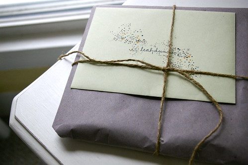 pretty package from leah duncan