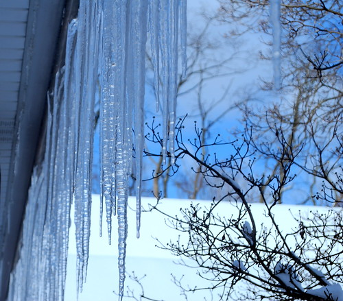 Icicles at School