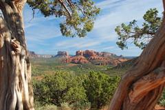 Across the valley and through the trees (kstraw2) Tags: trees red arizona tree rocks framed sedona az valley frame redrocks nikond80 kstraw2