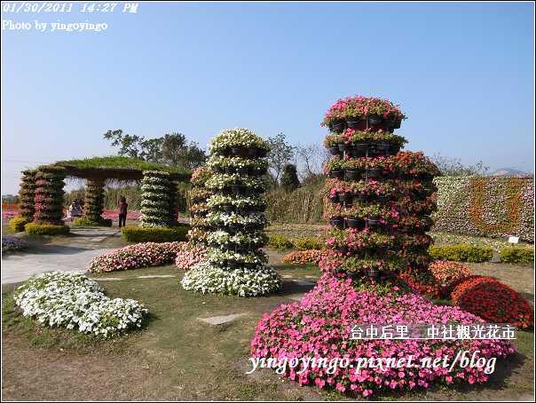 台中后里_中社光觀花市20110130_R0017616