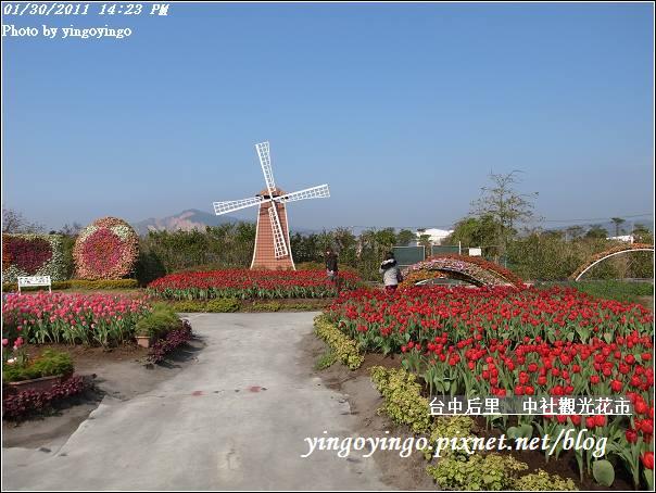 台中后里_中社光觀花市20110130_R0017614