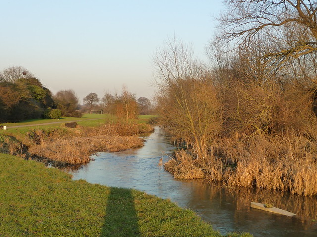 The Roding in Winter