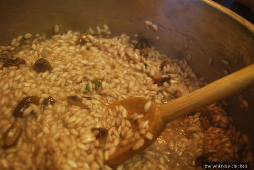 Risotto in Action