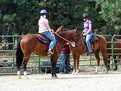 100_3606 (obsidianmoonranch) Tags: horses horse arabianhorse horsebackriding trailride friesian parelli naturalhorsemanship playday