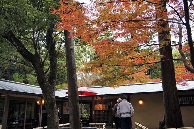 101113_150721_奈良公園_春日荷茶屋