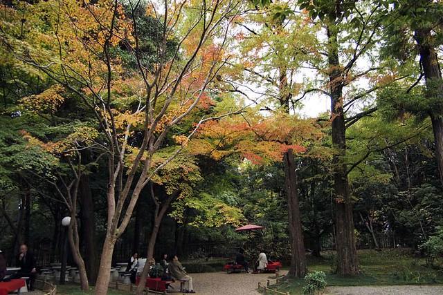 101113_151002_奈良公園_春日荷茶屋