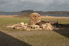 Holzstapel hinter dem Versammlungshaus Wikinger Museum Haithabu WHH 08-02-2011