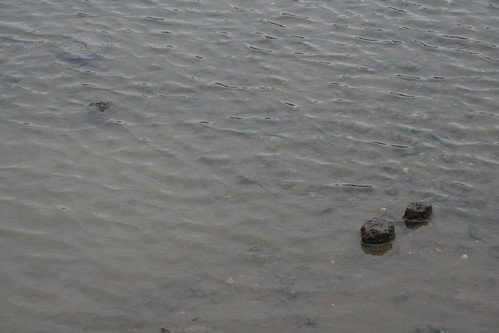 Anglo-saxon post - fish trap