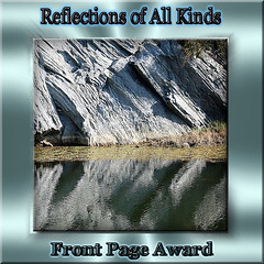 Reflections of All Kinds