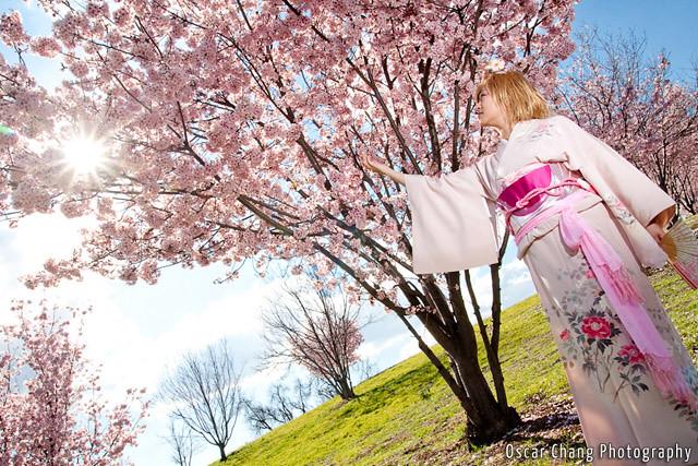 Sakura2011_0820
