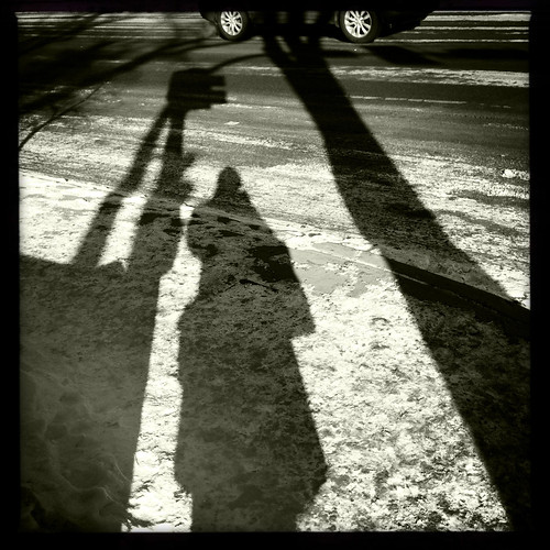 long shadows in the sun