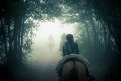 cabalgata (Gustavo Vlez H.) Tags: chile horse caballo chili niebla cabalgata chillan