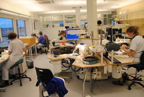Lab Nya Huset