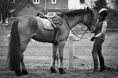 The horse and her rider (daniel.lofts) Tags: school horses horse woodland countryside riding equestrian jumps stables countrylife equestrianism
