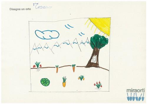 Disegna un orto 2A 1
