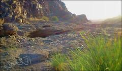 C360_2011-02-23 17-18-46 (MagicPAD - الكعبي) Tags: uae الإمارات الجزيرة الظاهر ناصر الكعبي الخطوة مصح محضة