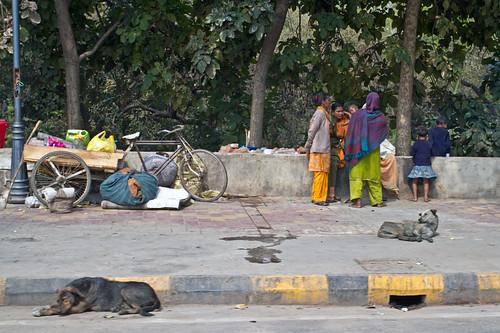 Hard liv på gatene
