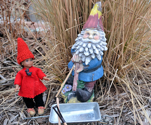 Fina Meets the Gnome