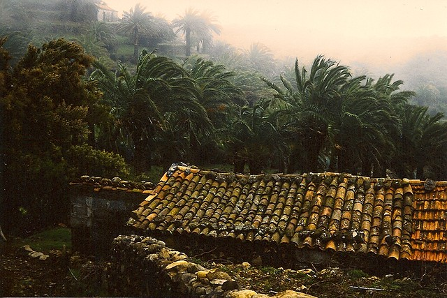 Alte hütte auf Gomera, Hintergrund Palmen