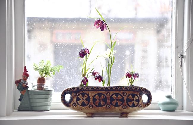 fönster mot våren