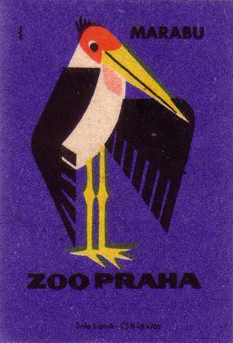 Prague Zoo: marabou stork