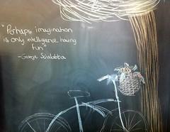 Imagination is intelligence having fun