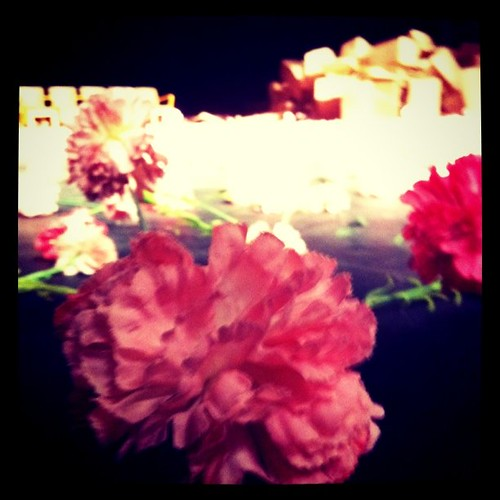 pina bausch 劇團劇目《康乃馨》carnations