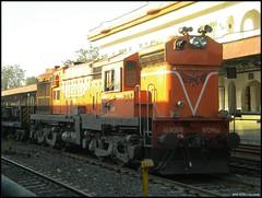 RTM WDM-3A#16806R (Vivek™) Tags: mishra indian 3a wd railways vivek wr ncr rtm gwl irfca 16806 indb