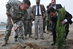 Reforesting Afghanistan top priority with 420,000 trees